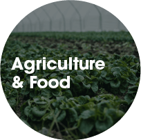 Agriculture & Food