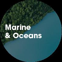 Marine & Oceans